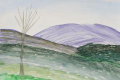 Quiet-Meadow